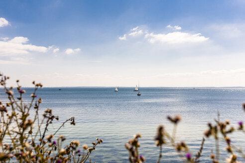 Germany, sailing boats on Baltic Sea - EGBF00168