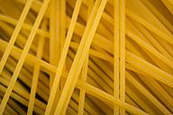 Spaghetti, close-up - JUNF00761