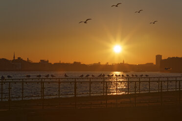 UK, London, Isle of Dogs, sunset at River Thames trail - GFF00968