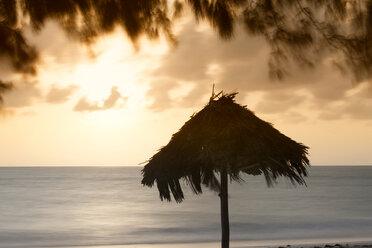 Tanzania, Zanzibar Island, beach umbrella at sunrise - DSGF01427