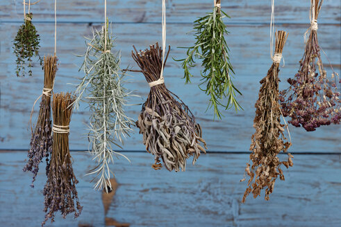 Herbs hanging out to dry - LBF01529