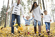 Happy family with two girls walking in autumn leaves - HAPF01316