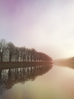 Germany, Cologne, sunshine and fog at Decksteiner Weiher - GWF04944