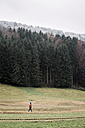 Austria, Mondsee, Austria, Mondsee, back view of young man strolling on a meadow in autumn - WVF00808