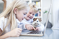 Brother and sister using laptop together - WESTF22554