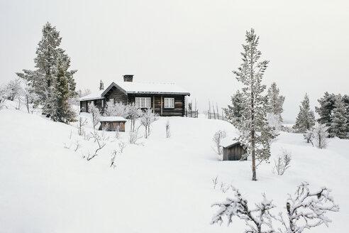 Norway, Oppland, log cabin in winter landscape - JUBF00199