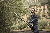Spain, man working with vibrator in olive grove - JASF01500