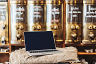 Laptop in a coffee roastery - KNSF00953