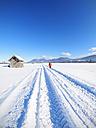 Germany, Bavaria, woman hiking on trail from Kochel am See to Benediktbeuern Abbey in winter - LAF01818