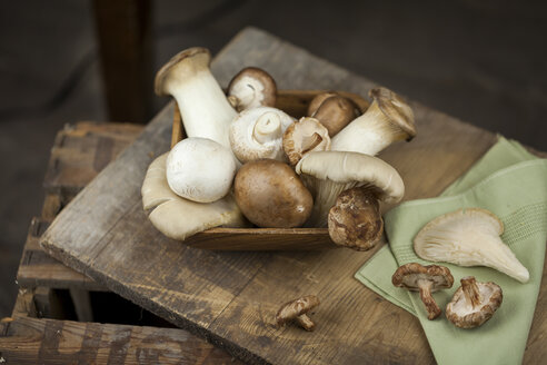Wooden bowl of different mushrooms - JUNF00819
