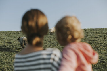 Netherlands, Schiermonnikoog, mother and little daughter looking at sheep on dyke - DWF00280