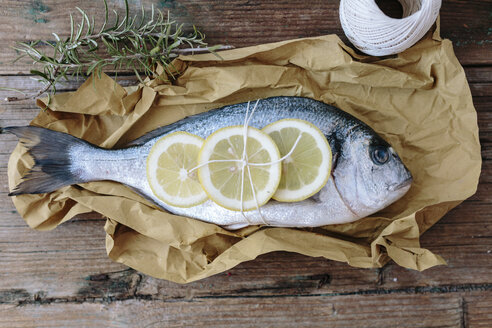 Sea Bream on a baking paper with lemon and rosemary - GIOF01857