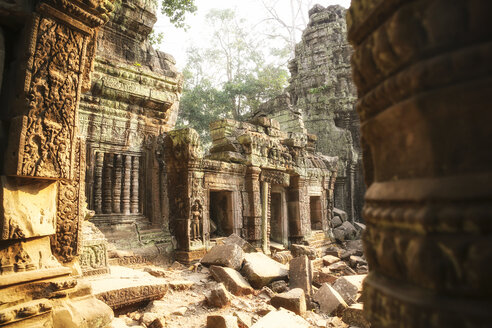 Cambodia, Angkor, Ta Prohm temple, Tomb Raider film location - REAF00199