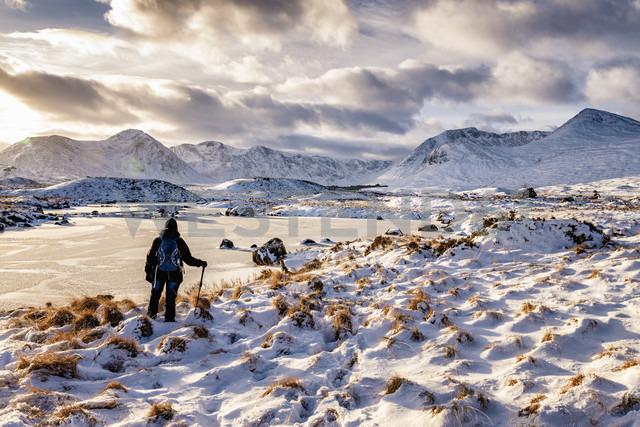 UK, Scotland, Rannoch Moor, Loch Ba and Black Mount Mountain Range, Female walker - SMAF00686