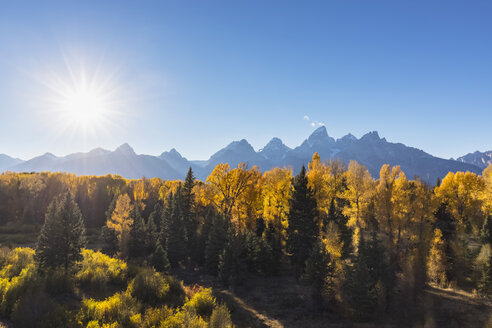 USA, Wyoming, Rocky Mountains, Grand Teton National Park,  Cathedral Group and aspens in autumn - FOF08862