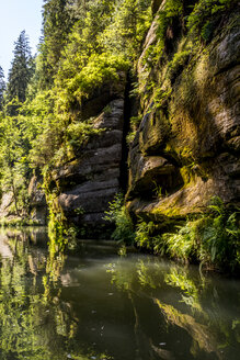 Czechia, Bohemian Switzerland, Kamenice Gorge - LMF00610
