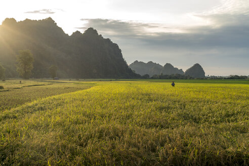 Myanmar, Hpa-an,Karsty landscape and fields - PCF00342