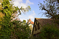 Germany, Rothenburg ob der Tauber, house and trees - FDF00214