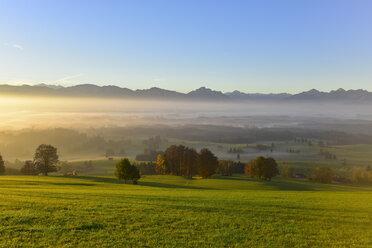 Germany, Allgaeu, autumnal landscape at sunrise - FDF00221