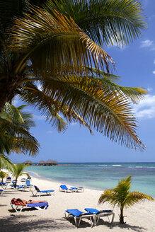 Caribbean, Dominican Republic, palm beach and sun loungers - DSGF01458