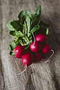 Bunch of red radishes on cloth - GIOF01928