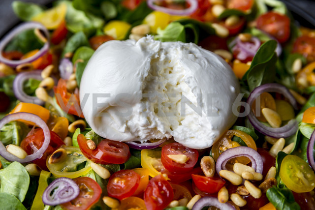 Plate of tomato salad with Burrata - SARF03195