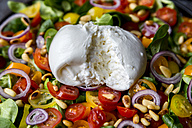 Plate of tomato salad with Burrata - SARF03195