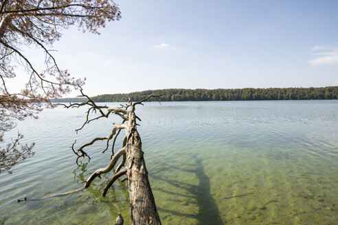 Germany, Brandenburg, Lake Stechlin - LMF00679