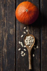 Hokkaido pumpkin and wooden spoon of pumpkin seeds on dark wood - CSF27901