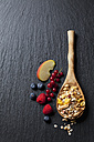 Wooden spoon of granola with dried fruits and various fresh fruits on slate - CSF27913