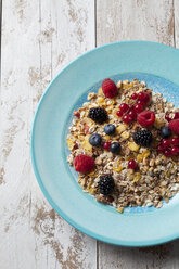 Plate of granola with various wild berries - CSF27925