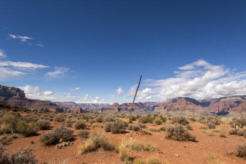 USA, Nevada, Grand Canyon National Park - LMF00702