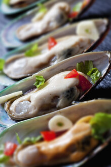 Green mussels with tomatoes, capsicum and garlic, on black slate slab - CSF27947