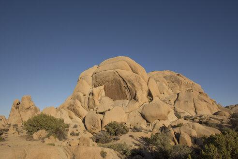 USA, California, Joshua Tree National Park, rocks - LMF00711