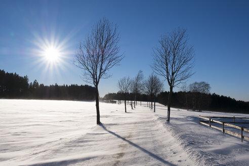 Germany, Bavaria, Fichtelgebirge, snowdrifts on country road near Bischofsgruen - SIEF07310