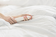 Hand of woman holding sex toy in bed - CHPF00368