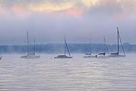 Germany, Bavaria, morning mood on Lake Starnberg as seen from St. Heinrich near Muensing - SIEF07311