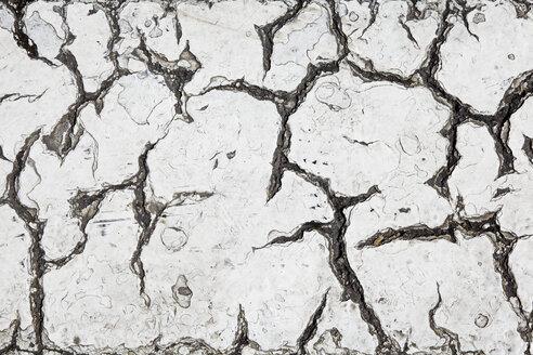 Cracks in tarmac, close-up - TLF00751