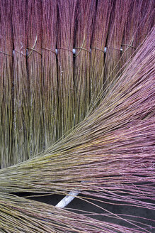 Spain, Cuenca, Wicker collected during the winter - DSGF01536