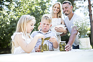 Family with preserved gherkins outdoors - WESTF22814