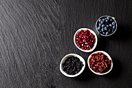 Bowls of blueberries, pomegranate seed, goji berries and chokeberries on slate - CSF27982