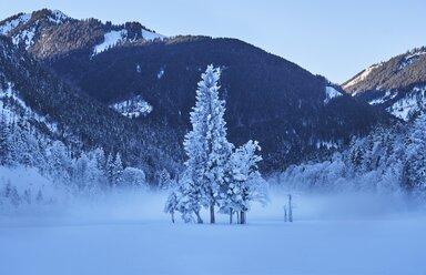 Austria, Tyrol, Karwendel, Riss Valley in winter - MRF01710