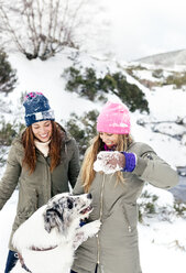 Two friends playing with their dog in the snow - MGOF03065