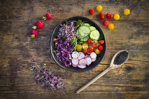 Lunch bowl of organic leaf salad, red cabbage, tomatoes, cucumber and radish sprouts - LVF05939