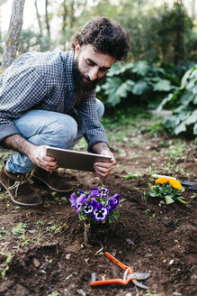 Man taking photographs with a tablet of flowers planted in garden - JRFF01283