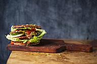 Veggie Burger - MYF01886