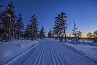 Germany, Lower Saxony, Harz National Park, cross-country ski run 'Auf dem Acker' in the evening - PVCF01027