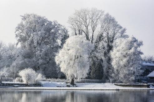 Germany, Bavaria, Chiemsee in winter - THAF01899
