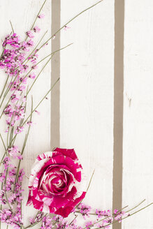 Floral arrangement with rose blossom on white wood - CMF00667
