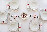 Festive laid table - LVF05947